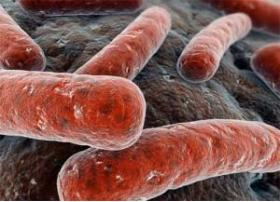 LE DIAGNOSTIC DE LA TUBERCULOSE DANS LE FAUTEUIL DENTAIRE - Bimedis - 1